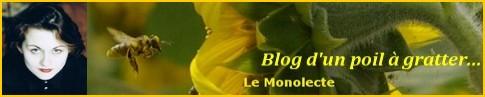 Cliquez ici pour découvrir le blog...