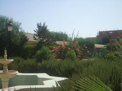 Une autre vue du jardin public à Harchoune (Chlef)