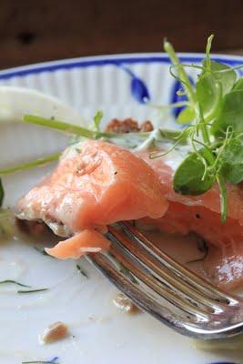 Recette danoise du Saumon au sel (Cuisine scandinave) 2