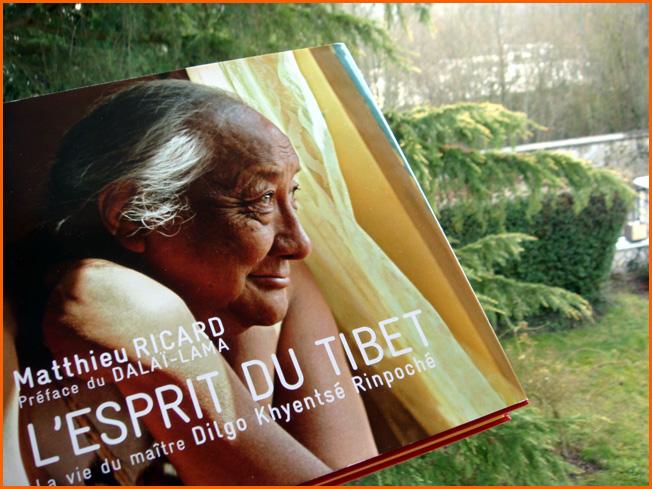 matthieu-ricard-lesprit-du-tibet.1266495607.jpg