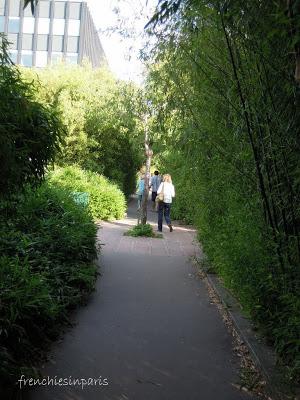 Promenade plantée entre Bastille et Vincennes : Balade dans les airs de Paris 5
