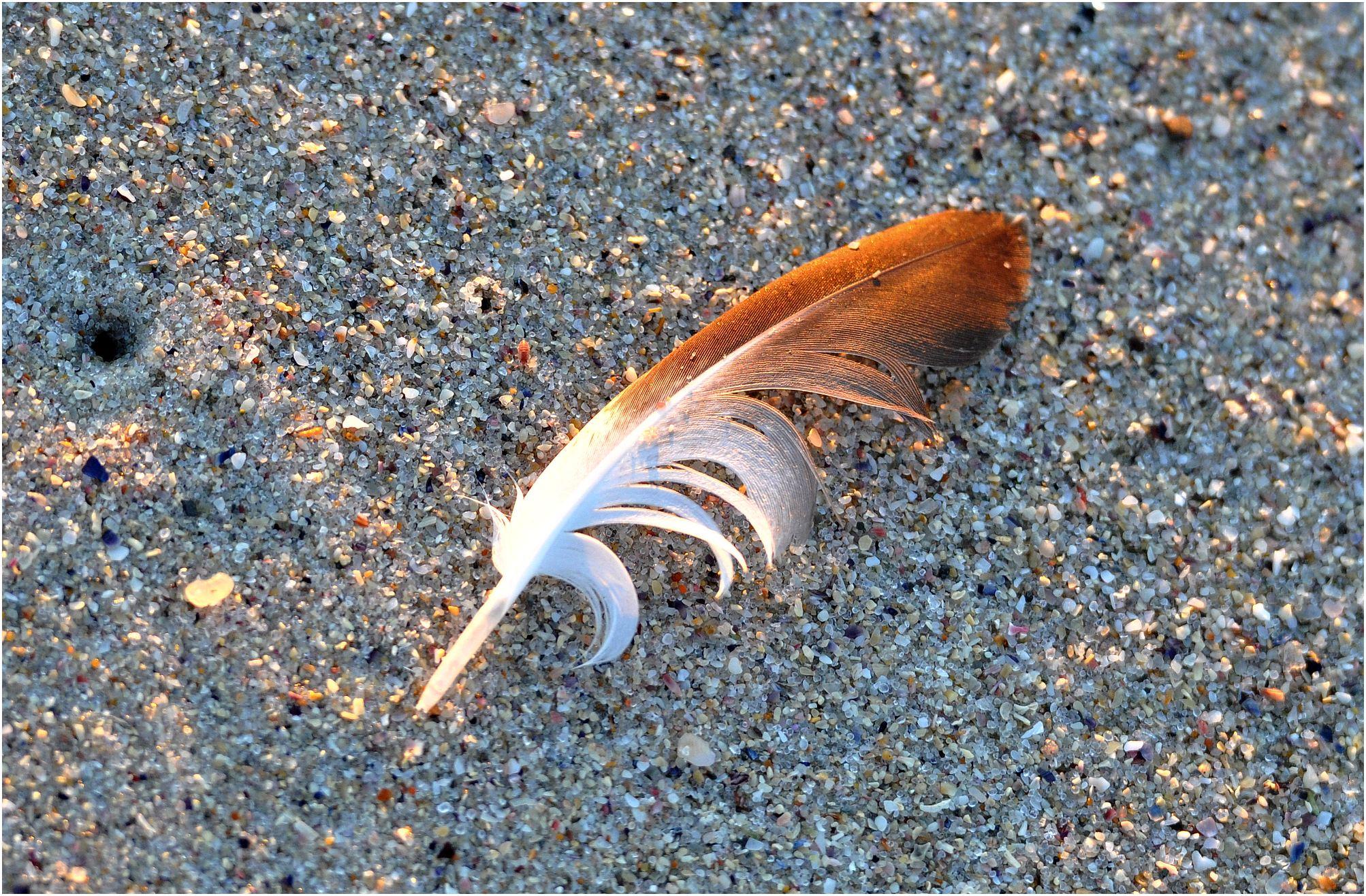plage sable galice espagne