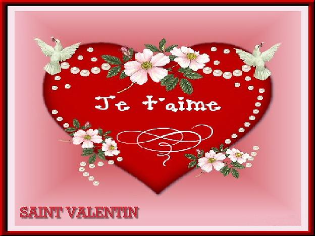 saint valentin carte rose