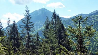 De Eschenlohe à l'Osterfeuerspitze ; balade bucolique en Bavière (Randonnée Allemagne) 8