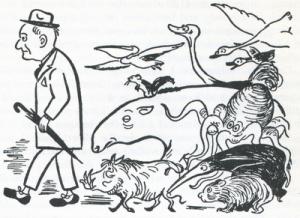 «Comment attirer le wombat» et autres délires zoologiques 2