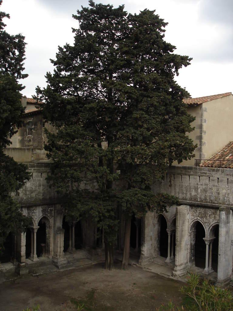 Arles ; ancienne colonie romaine au riche patrimoine historique en Provence 21
