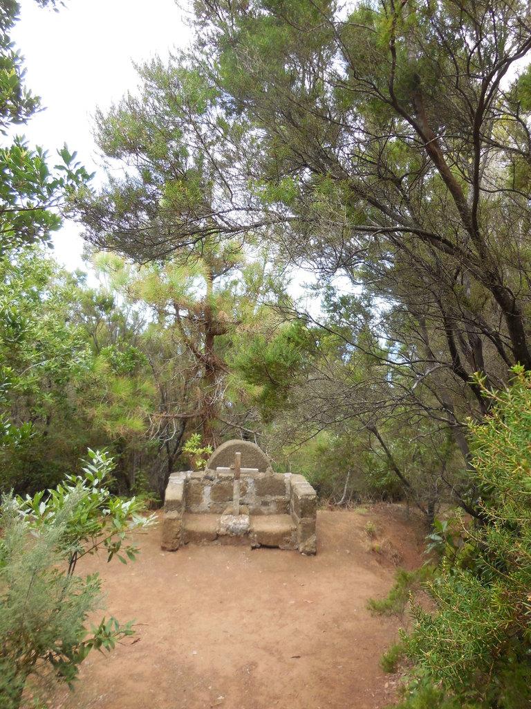 Dans la forêt, une stèle à la mémoire des Guanches qui furent les premiers habitants de l'île avant la conquête espagnole.