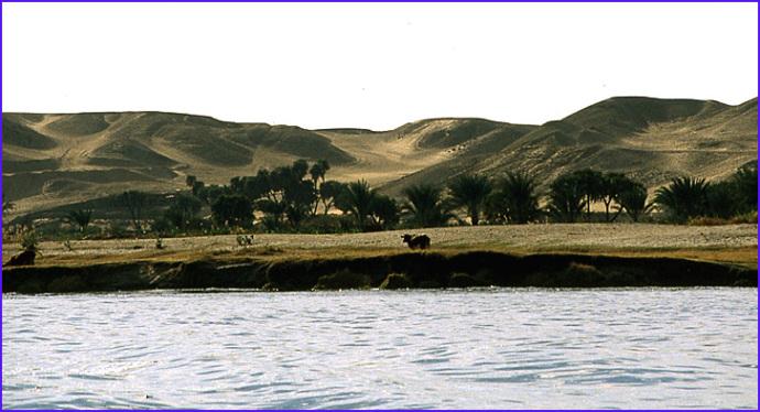 paysage du nil