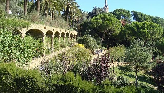 Parc Güell en photos ; promenade au pays des merveilles (Barcelone tourisme) 14