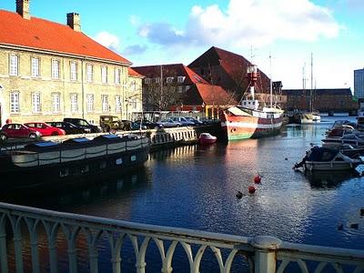 Marie Hélène, française expatriée à Copenhague: Entretien 20