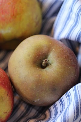 Crumble croustillant aux pommes, noix et flocons d'avoine (Recette anglaise) 4