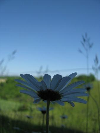 Photo_1584