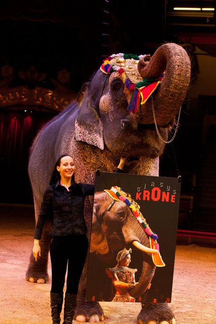 Circus Krone, le plus grand cirque d'Europe: une institution à Munich! 3