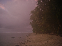 LOrd Howe Micronésie 272.jpg