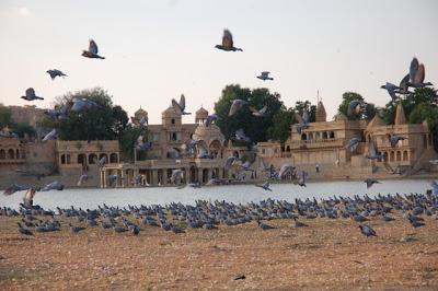Jaisalmer, la dorée : les temples Jains et le Thar Heritage Museum 29