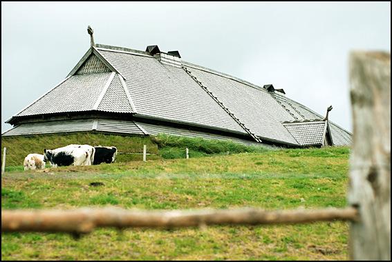 ferme viking Lofoten