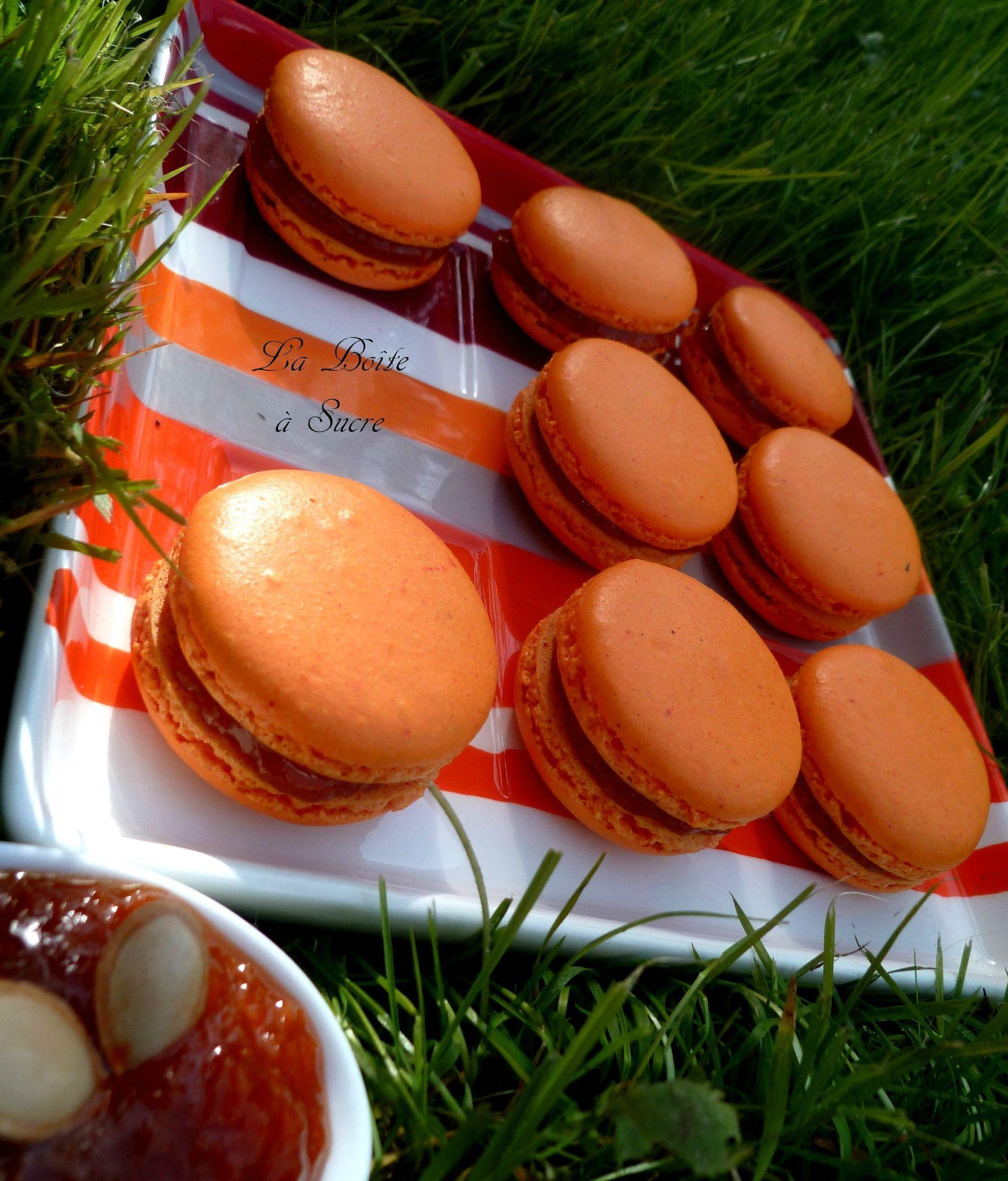 Macarons citrouille 3