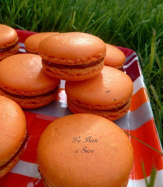 Macarons citrouille 2