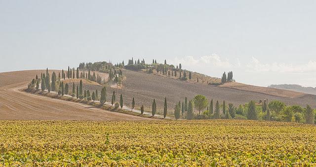 Voyage en Italie - 10 jours en Toscane et en Ombrie 15