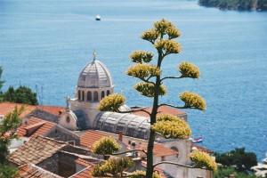 Bonnes adresses de restaurants en Croatie et spécialités à ne pas manquer 6