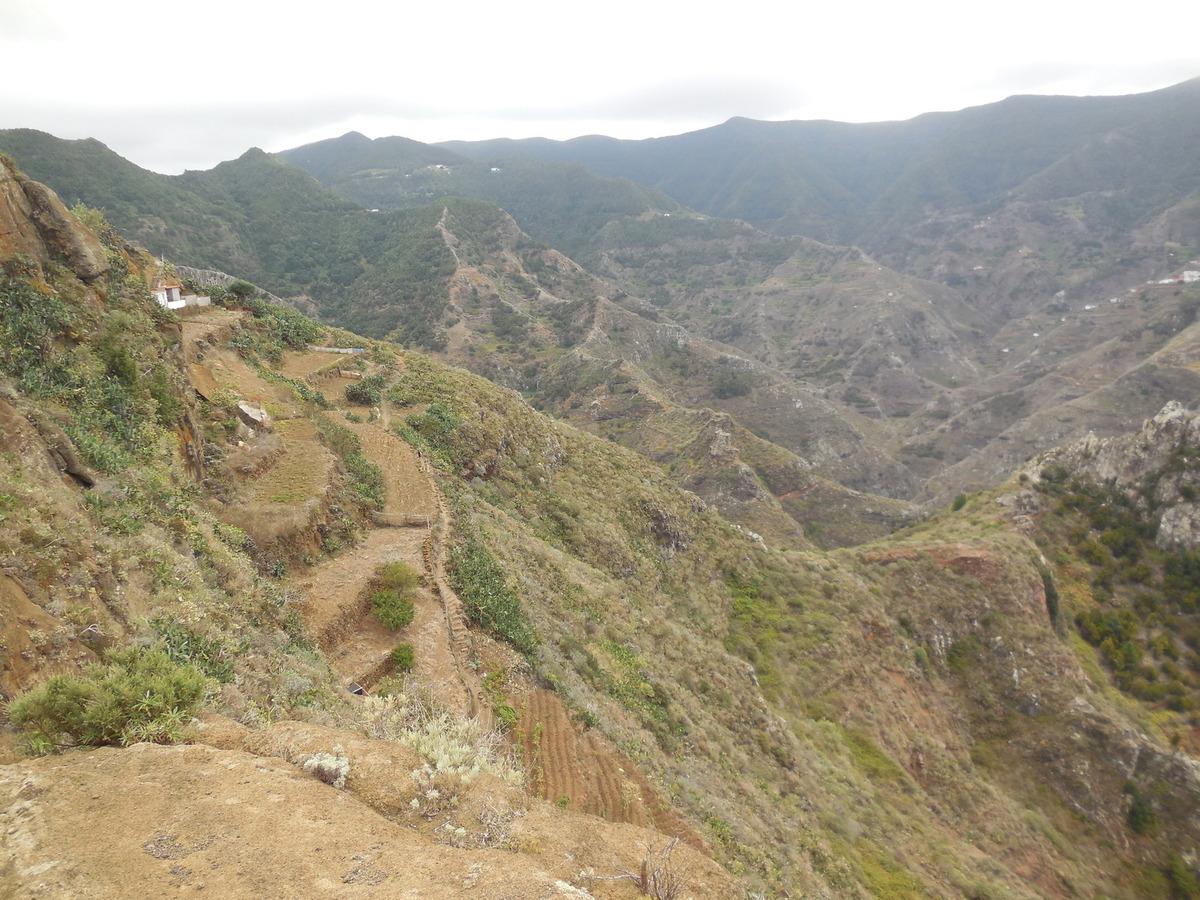 Randonnée dans le massif de l'Anaga- Ile de Ténérife