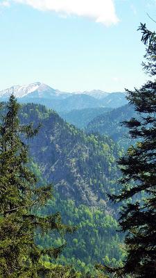 De Eschenlohe à l'Osterfeuerspitze ; balade bucolique en Bavière (Randonnée Allemagne) 25