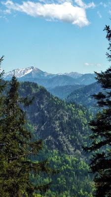 De Eschenlohe à l'Osterfeuerspitze ; balade bucolique en Bavière (Randonnée Allemagne) 26