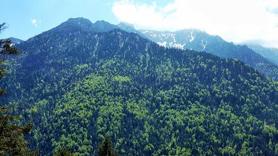 De Eschenlohe à l'Osterfeuerspitze ; balade bucolique en Bavière (Randonnée Allemagne) 29