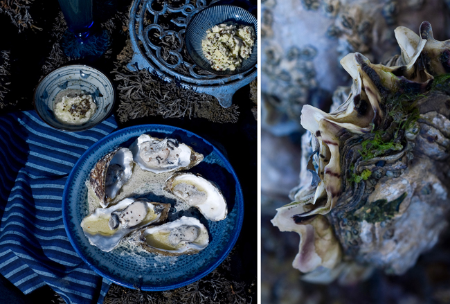 Je cuisine marin d'Amélie Pignarre : Souffle du bord de mer sur la cuisine 3