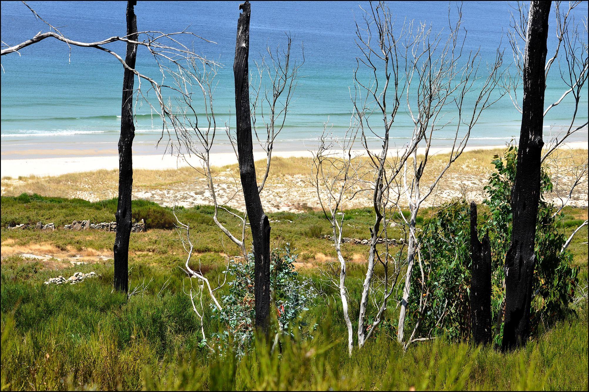 plage galice