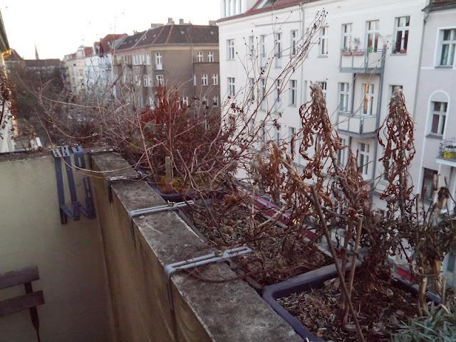 Vivre à Berlin ; les aléas d'avril 2
