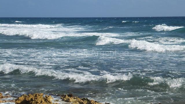 Riviera Maya : Détente à la mexicaine sur une plage d'Akumal 5