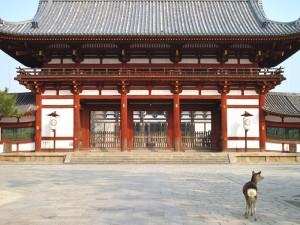 Voyage Japon : le Kansai, une région magnifique 14