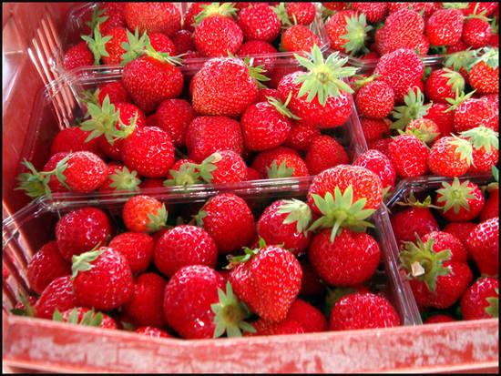 fraises-de-plougastel.1280579388.jpg