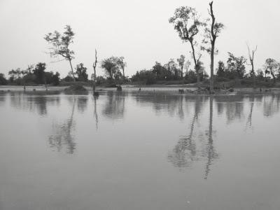 Parc national de Dibaru Saikhowa: week end nature en Inde 1