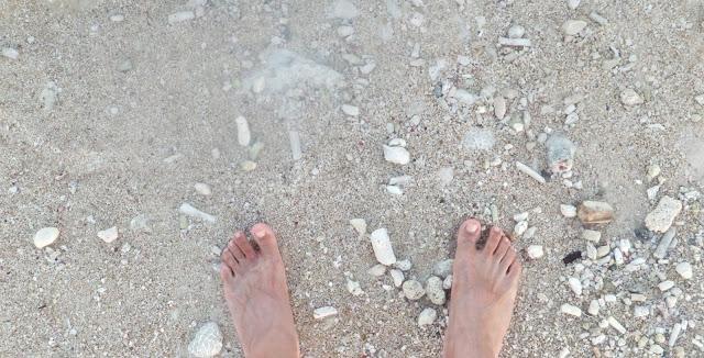 Riviera Maya : Détente à la mexicaine sur une plage d'Akumal 12
