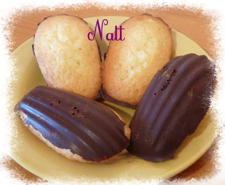madeleines_de_commercy_dos_chocolat_