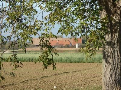 27-10-2010-balade-001.1288194647.jpg