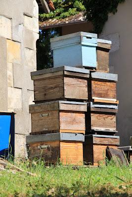 ruches sancerre terroirs de france
