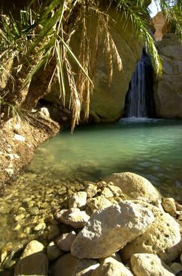 chebika-tunisie57019556chebika2.1279016416.jpg