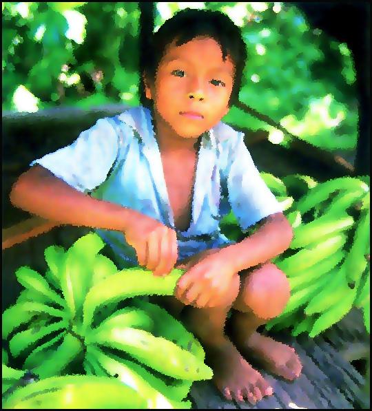 gamin-travailleur-plantations.1269254879.jpg
