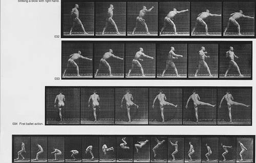 Muybridge Bailey séries