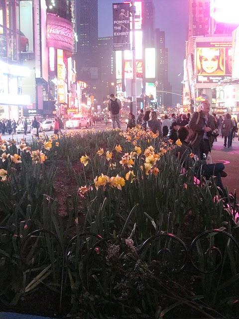 Lumières et Nuits de Brodway (New York City) en photos 16