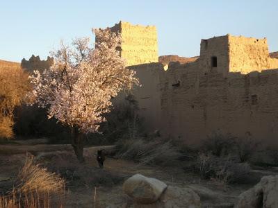 Voyage aventures au Maroc : rencontres et expériences marocaines 22