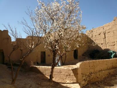 Voyage aventures au Maroc : rencontres et expériences marocaines 23