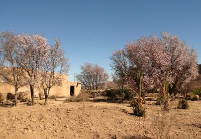 Voyage aventures au Maroc : rencontres et expériences marocaines 19