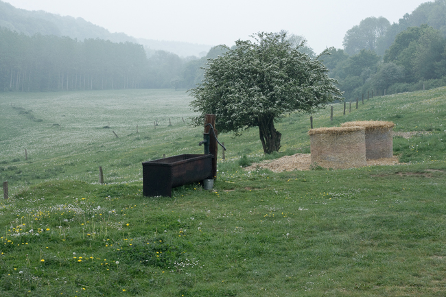 Auberge et Ferme du Prieuré : manger et dormir dans une ferme authentique en Picardie! 2
