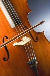 232px-Cello_study.jpg
