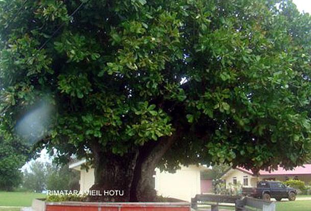 RIMATARA   VIEIL HOTU  ANAPOTO