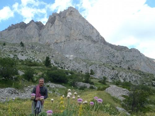 ubaye,calcaire,granite,escalade,edelweiss,fleurs,chamois,marmotte,bouquetin,brec de chamberon